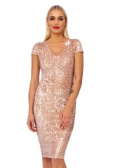 Oyster Sequin Detail Bodycon Midi Dress