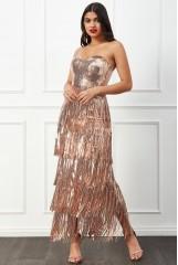 Champagne Boob Tube Sequin Fringe Maxi Dress